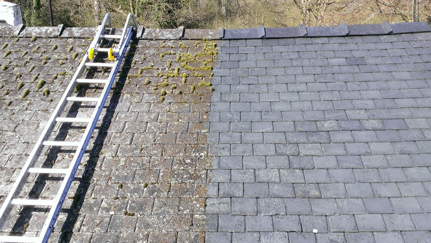 Moss Removal Platinum Roofing